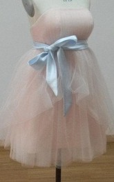 Mini Organza Dress With Sash and Pleats