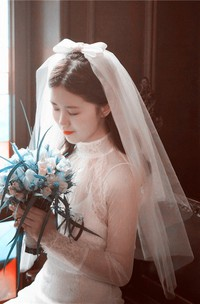 Simple Retro Wedding Veil With Insert Comb Bride Veil For Travel Shot