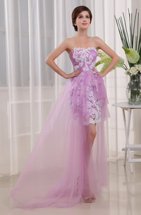 Strapless Tulle Fitted Mini Dress with Appliques