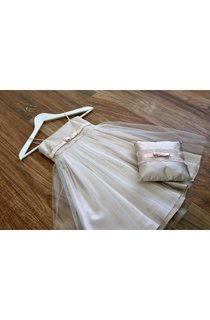 Elegant Spaghetti Strap Lace Waist A-line Tulle Dress With Bow Sash