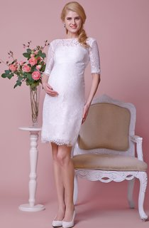 High Neck Allover Lace Knee Length Dress With Sash and Half Sleeves