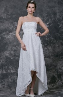 Vintage Chic Lace-Over Dress With Short to Long Hemline