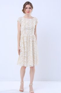Cap Sleeve Knee Length Lace Dress
