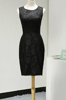 Short Sleeveless Lace Dress With Zipper Back
