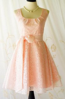 Nicely Lace Vintage Design  Bridesmaid Spring Summer Dress