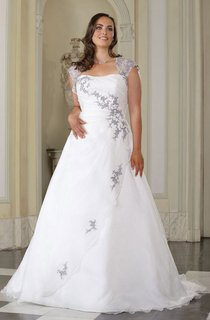 A-Line Long Queen Anne Satin Brush Train Appliques Dress