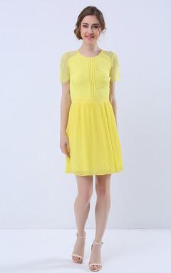 Illusion Sleeve Pleated Skirt Short Dress