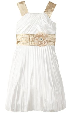 Sleeveless A-line Pleated Dress With Criss Cross