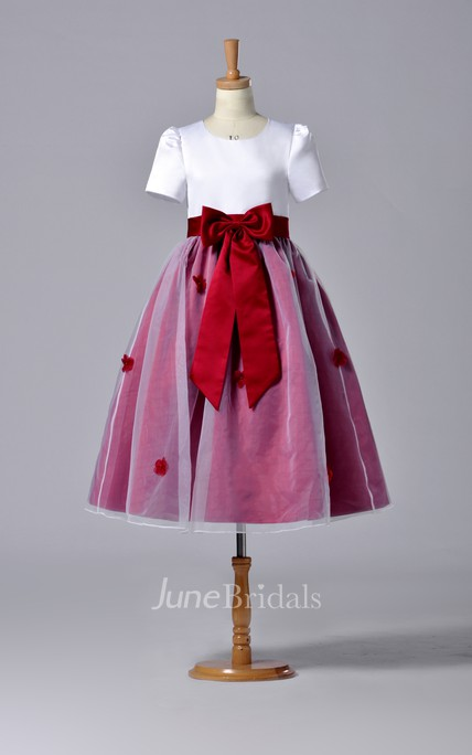 Short Sleeve High Neck Pleated Organza Dress With Bowknot
