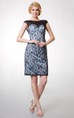 Cap-sleeved Bateau Neck Short Lace Dress With Illusion Back