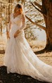Elegant Country Style Lace V-neck Illusion Long Sleeve Court-train Wedding Dress with Beadings